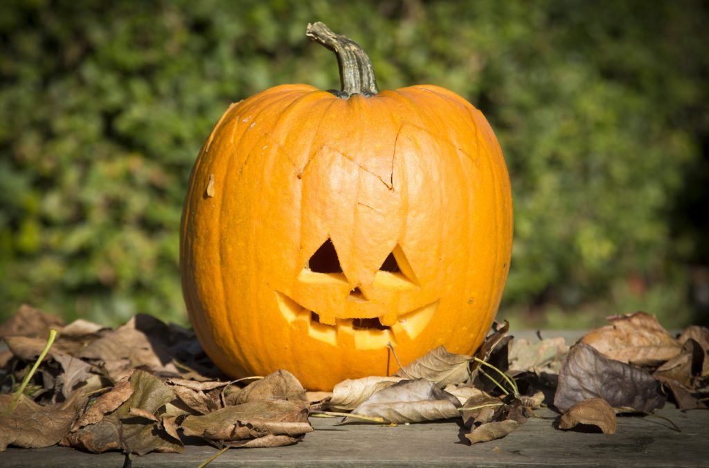 Halloween pumpa idé