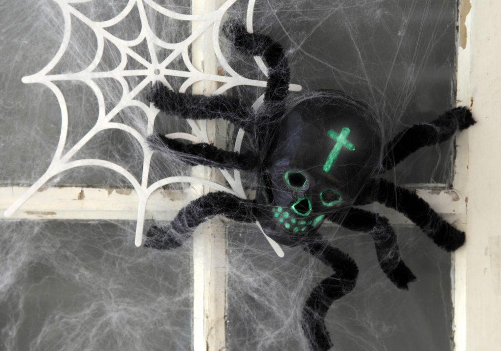 Kreativ halloween lav selv pynt med edderkop