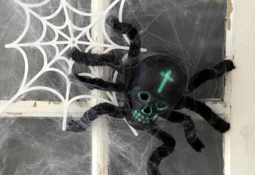 Kreativ halloween gör själv dekorationer med spindel